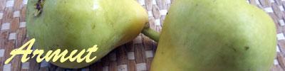 pear tarifleri