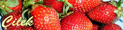fraise recettes