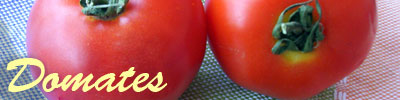 tomate recettes