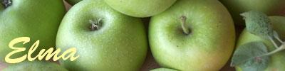 recetas de manzana