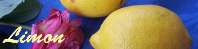 Limon tarifleri