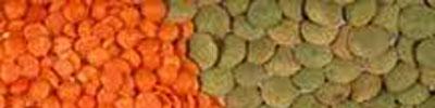 lentil tarifleri
