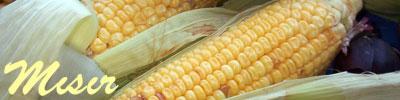 recetas de maíz