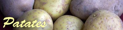 البطاطس tarifleri