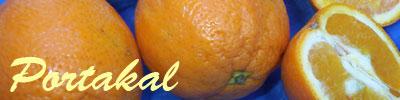 Portakal tarifleri