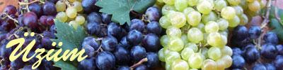 Виноград tarifleri