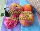 Cream Cake With Peaches