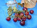 Compota de cereza agria