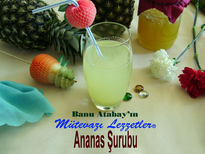 Ananas �urubu (g�rsel)