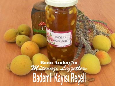 Bademli Kay�s� Re�eli (g�rsel)