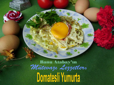 Domatesli Yumurta (g�rsel)