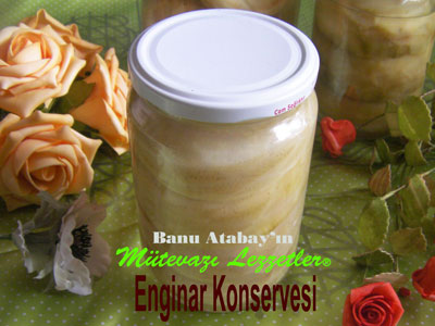 Enginar Konservesi (g�rsel)