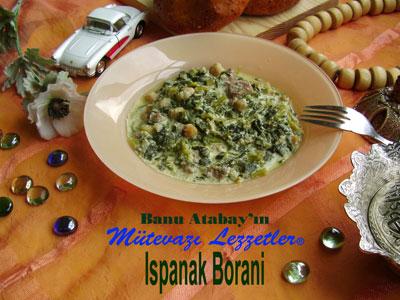 Ispanak Borani (görsel)