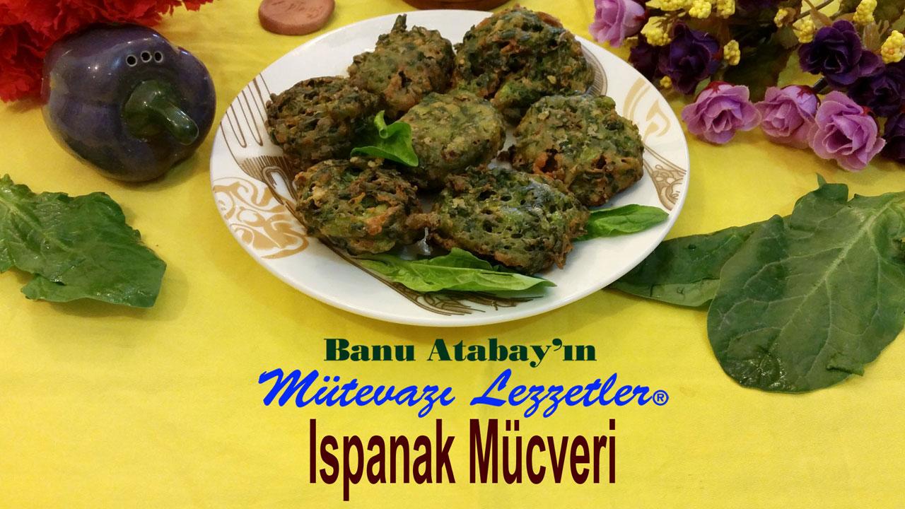 Ispanak M�cveri (g�rsel)