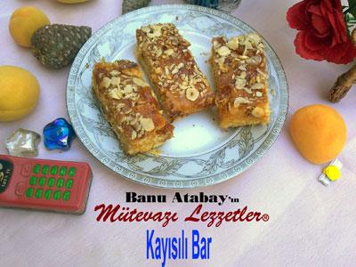 Kay�s�l� Bar (g�rsel)