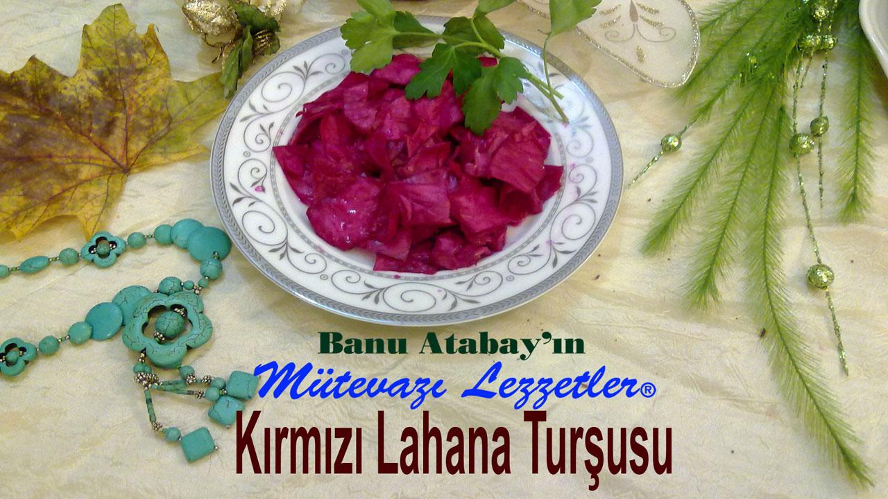 K�rm�z� Lahana Tur�usu (g�rsel)