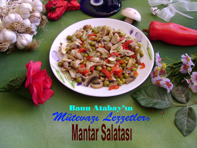 Mantar Salatası (görsel)
