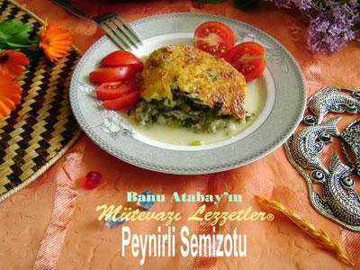 Peynirli Semizotu (görsel)