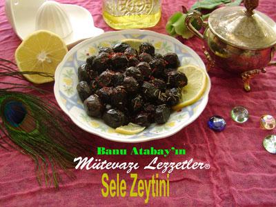 Sele Zeytini (görsel)