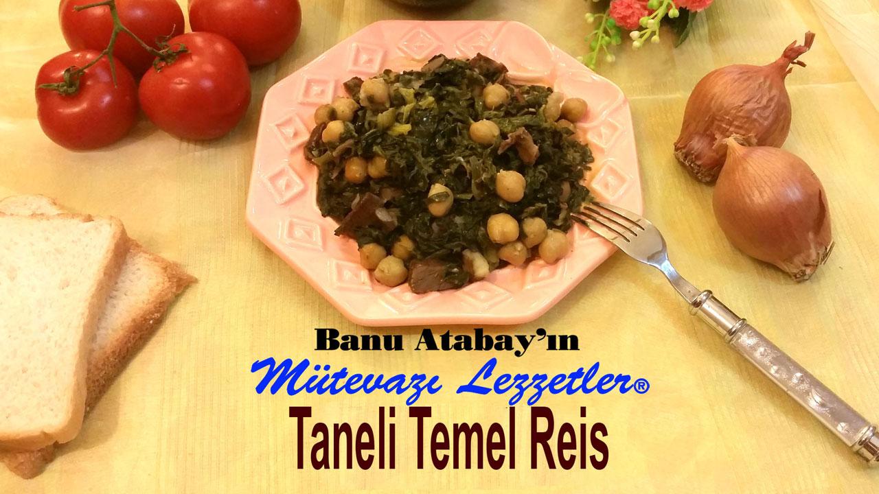 Taneli Temel Reis (görsel)