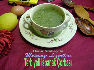Terbiyeli Ispanak Çorbası (görsel)
