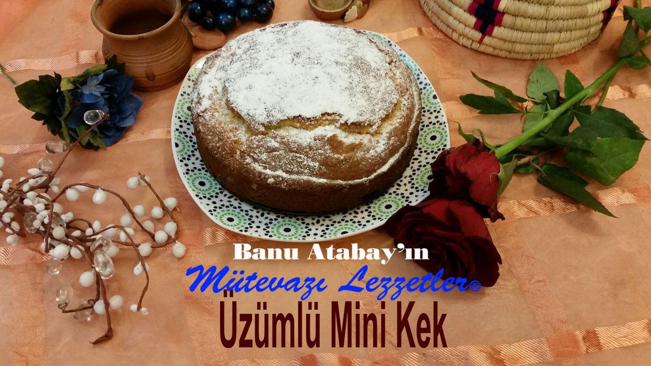 Üzümlü Mini Kek (görsel)